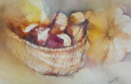 urquias-aquarelle-Herbs Stillleben1