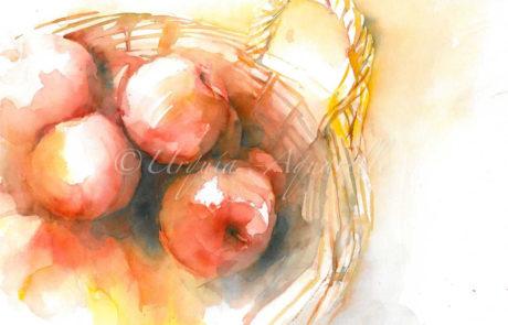 urquia-aquarelle-Äpfel-Stilleben4