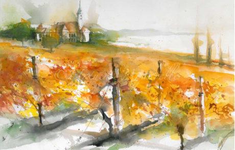 urquia-aquarelle-Landschaft Birnau